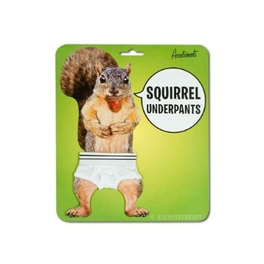 squirrelunderpants