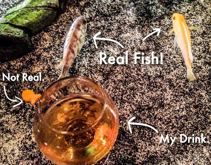 fishdrink.jpg