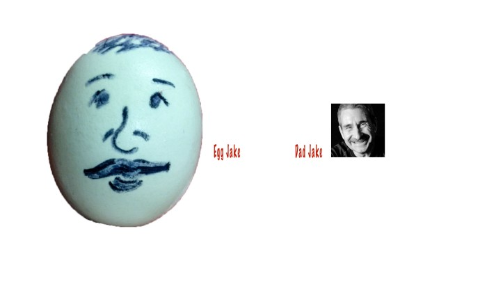 eggcomparison